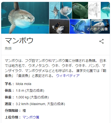 マンボウ https://g.co/kgs/HdxRrx